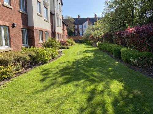 Business grounds maintenance services