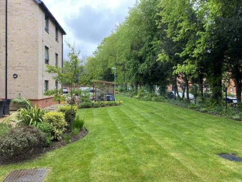 Office Grounds maintenance services